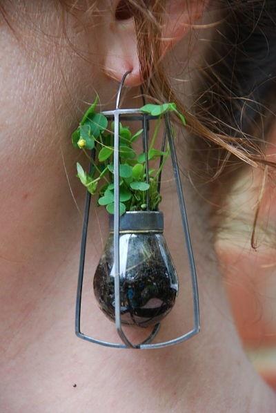 brincos criativos de planta