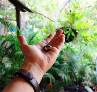 Anel de tucum ou anel de coco o que significa?