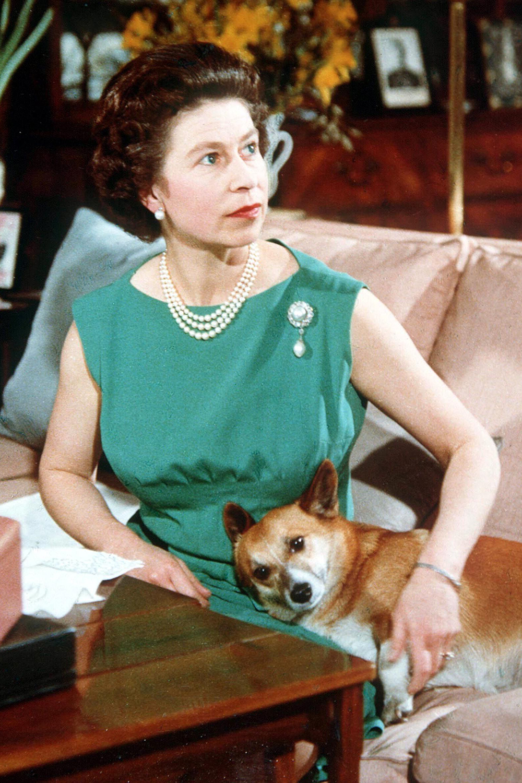 Rainha Elizabeth Broches