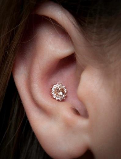 conch piercing brilhante